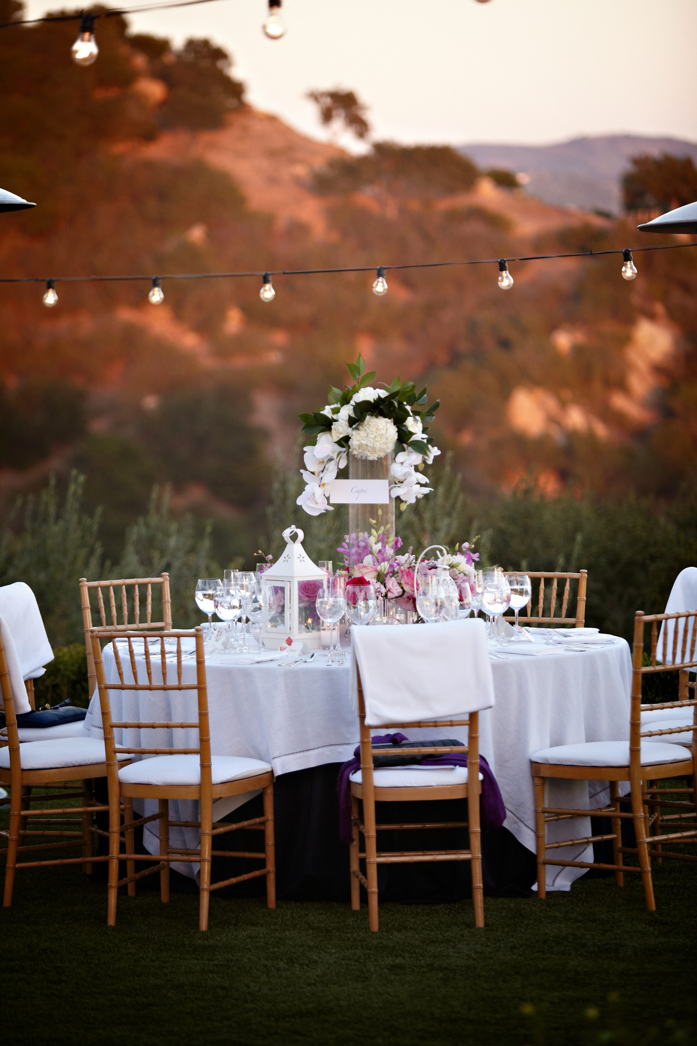 mountain-view-estate-wedding-reception